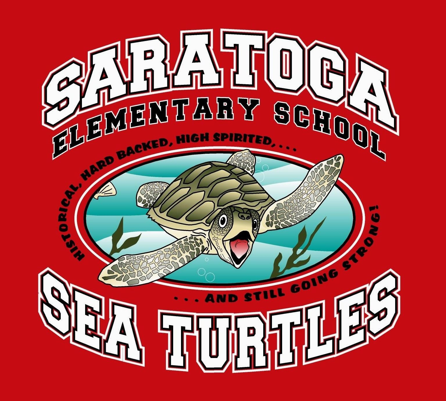 Saratoga Sea Turtles Class Background